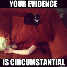 circumstantil evidence cat